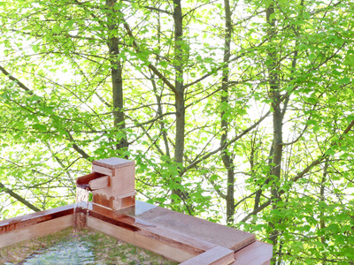 こんな風に木々に囲まれた露天風呂なら、 湯治と森林浴を兼ねてリフレッシュまちがいなしですよね