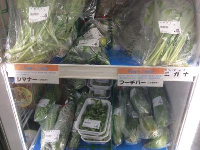 沖縄の野菜たちです。 ほら、見慣れない名前ですよね。 お勧めの食べ方あったら教えてください♪