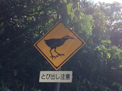 沖縄旅行記2014 ~道の始まりってどこ?編~