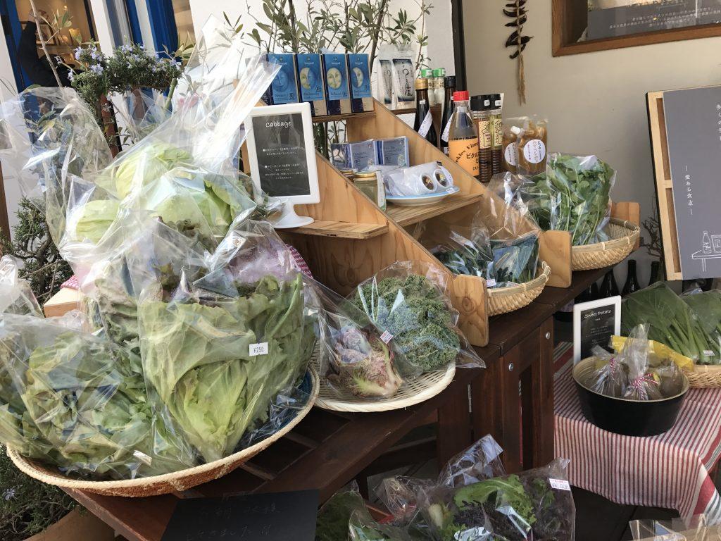 いろいろな野菜にチャレンジしてみよう!