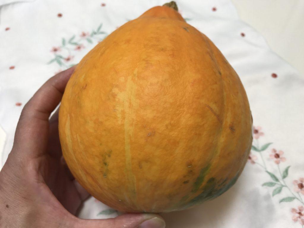 カボチャの仲間のコリンキーは使いやすい女性のミカタの野菜です!