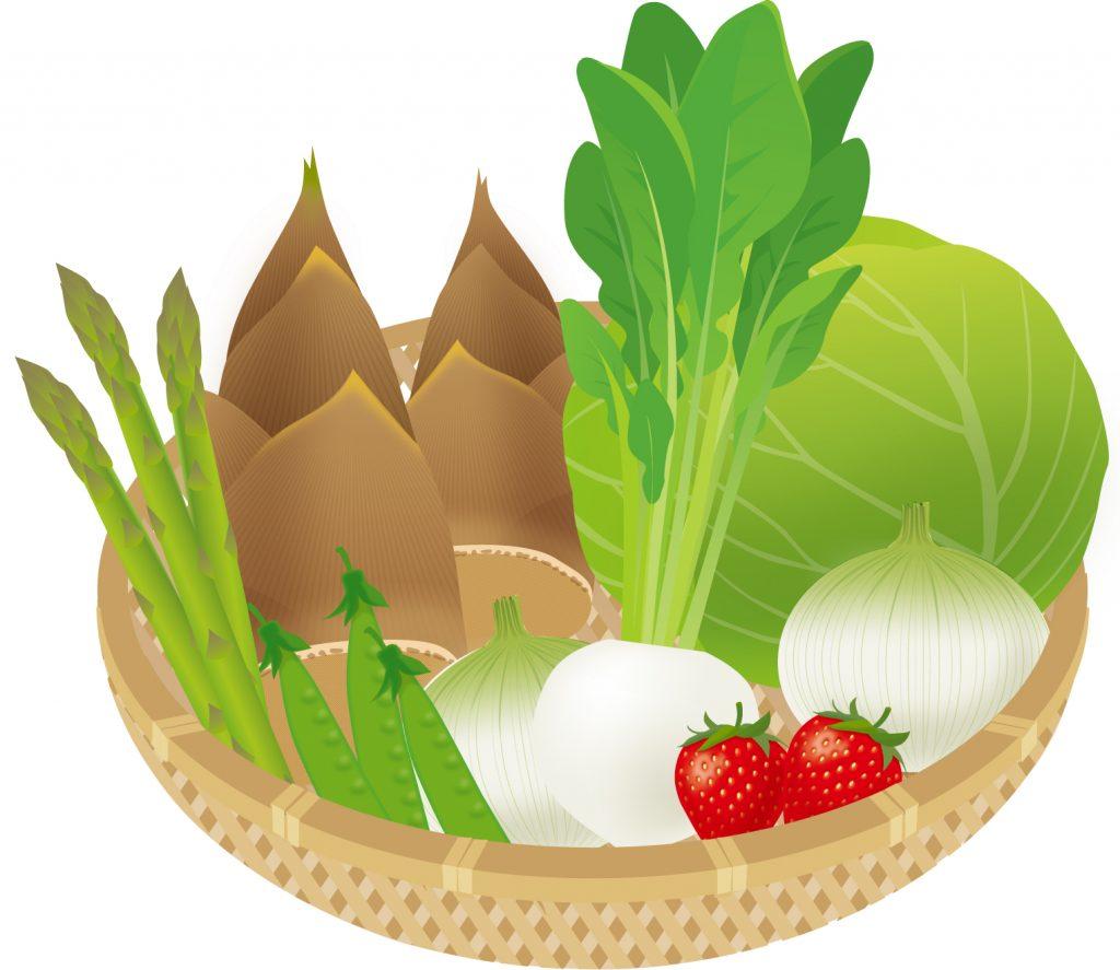 何となく不調が起きないように、お味噌汁で季節のものをもっと食べよう!